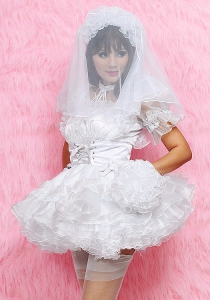 Virgin Bridal Veil